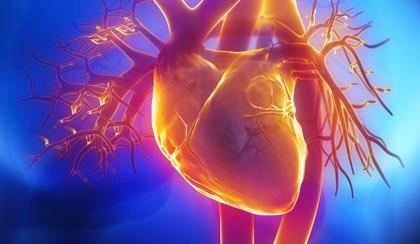 Do DPP-4 Inhibitors Harm Patients with T2DM and Heart Failure?