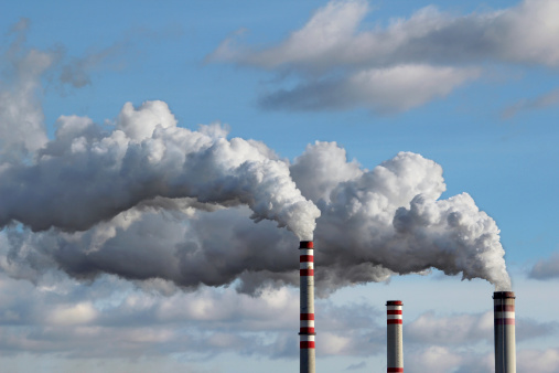 Air Pollution Exposure During Pregnancy Ups ASD Risk in Offspring