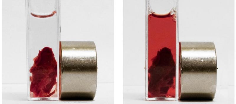 Magnetic thrombolytic blood clot
