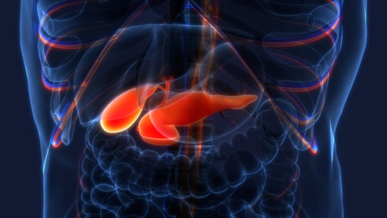 X-ray of pancreas